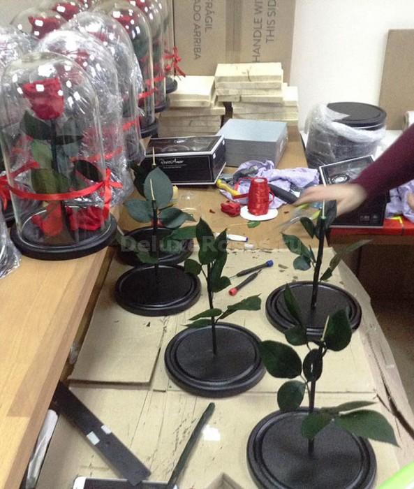 Производитство розы в колбе