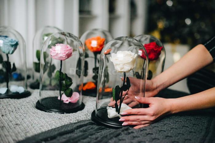 Розы в колбе в руках