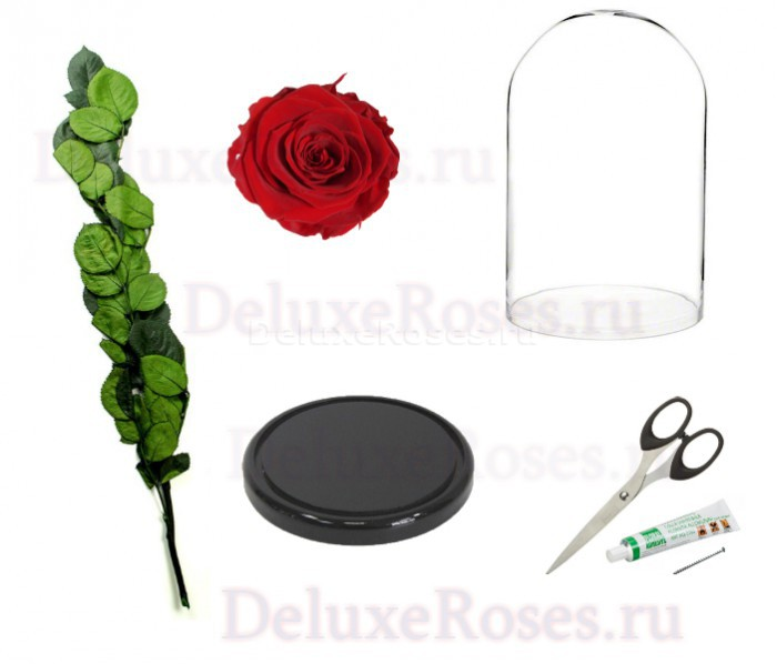 Материалы для изготвления розы в колбе